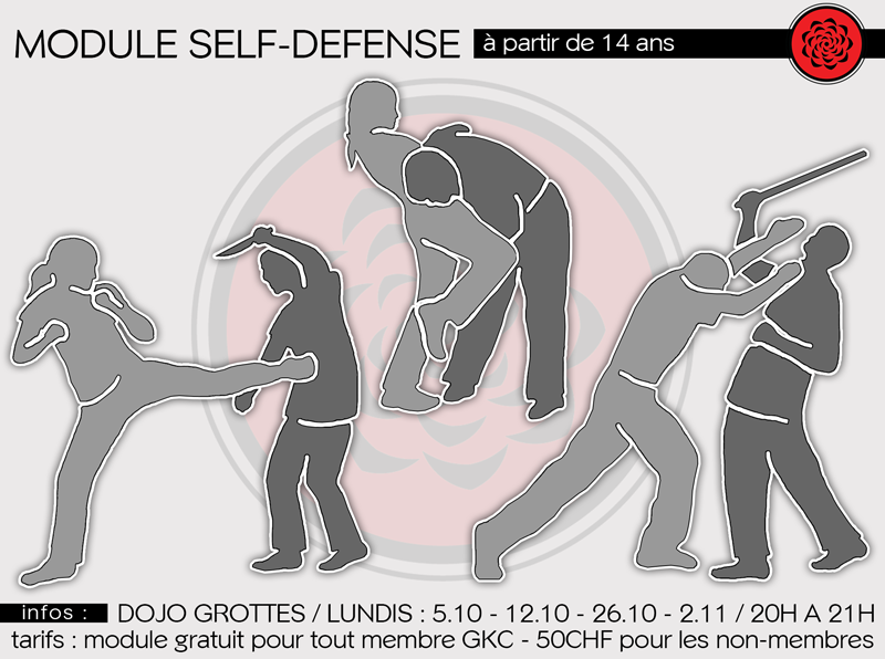 Module « Self-Defense »